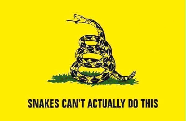 Gadsden Flag Meme
